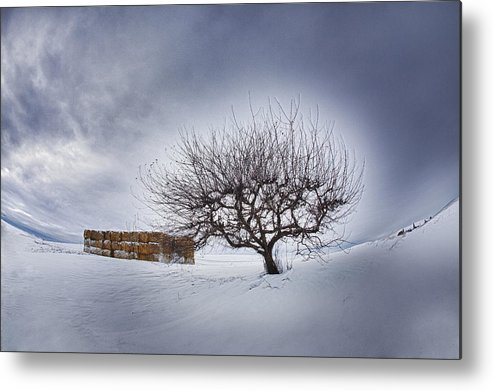 Snow; Apple Tree; Hay Bales Clouds Metal Print featuring the photograph Winter Fields by Eggers Photography