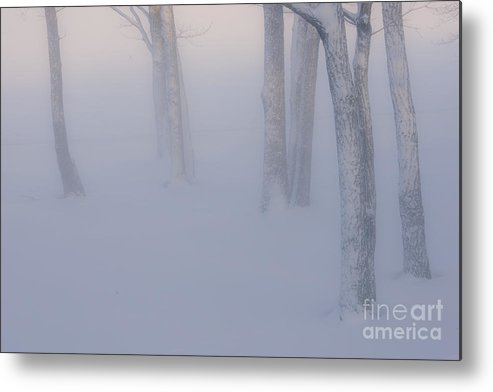 Hokkaido Metal Print featuring the photograph Winter Fog by John Shaw