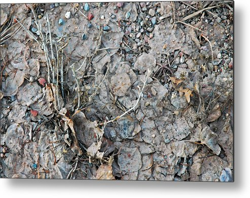 Colorado Photographs Photographs Metal Print featuring the photograph Winter's Mud by Allen Carroll
