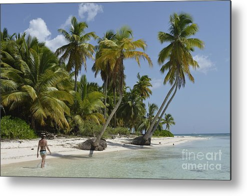 Contemplation Metal Print featuring the photograph Woman Walking By Coconuts Trees On A Pristine Beach by Sami Sarkis