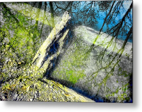 Abstract Metal Print featuring the photograph Wood Reflections by Olivier Le Queinec