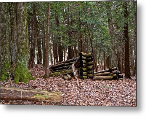 Pennsylvania Metal Print featuring the photograph Woodland Cabin Ruins by Jake Donaldson