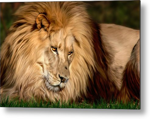 Cameron Metal Print featuring the digital art Cameron by Big Cat Rescue