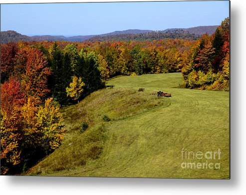 West Virginia Metal Print featuring the photograph Fall Color Randolph County West Virginia by Thomas R Fletcher