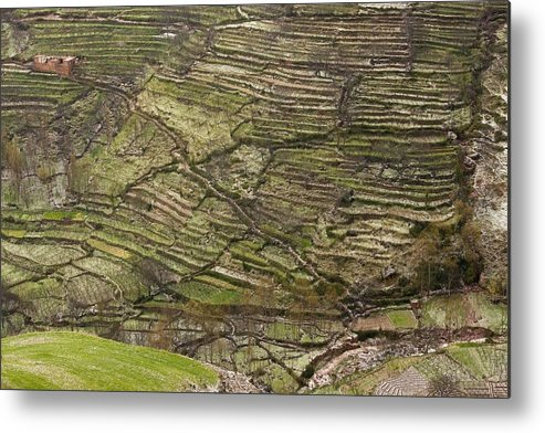 Berber Metal Print featuring the photograph Terraced Hillside In Morocco by Bob Gibbons
