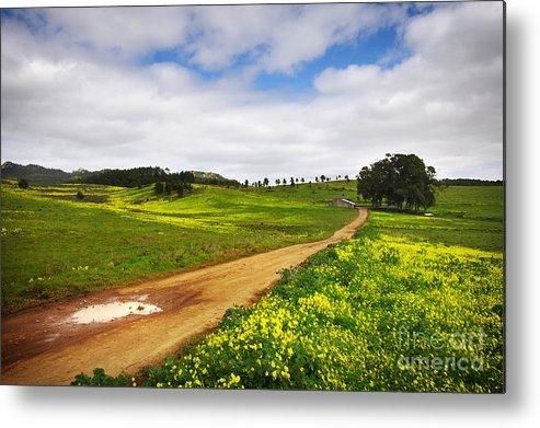 Autumn Metal Print featuring the photograph Countryside Landscape by Carlos Caetano