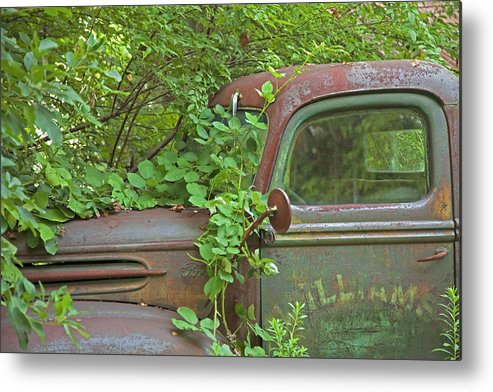Rustbuckets Metal Print featuring the photograph Overgrown Rusty Ford Pickup Truck by John Stephens