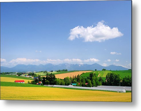 Horizontal Metal Print featuring the photograph Summer In Hokkaido by Frank Chen