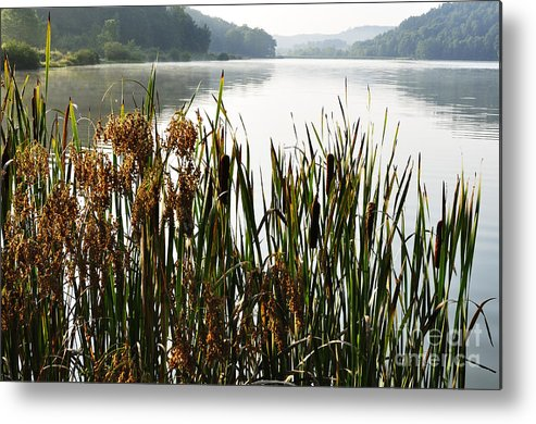 Big Ditch Lake Metal Print featuring the photograph Misty Morning Big Ditch Lake by Thomas R Fletcher