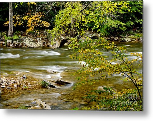 West Virginia Metal Print featuring the photograph Fall Along Williams River by Thomas R Fletcher