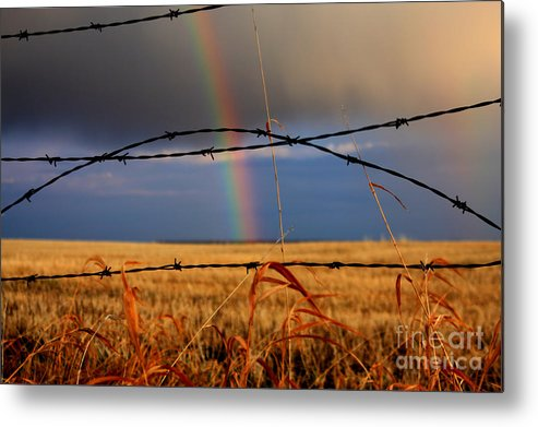Rainbow Metal Print featuring the photograph Access Denied by James Anderson