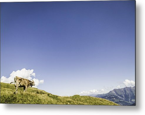 Horizontal Metal Print featuring the photograph Aerial View Of Rural Landscape by Manuel Sulzer