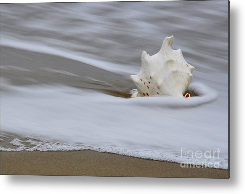 Sea Metal Print featuring the photograph After The Wave by Tamera James
