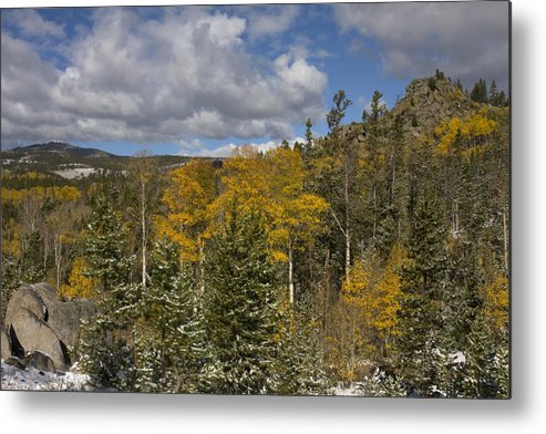 Snow Metal Print featuring the photograph Aspen Glow With Snow by Renee Skiba