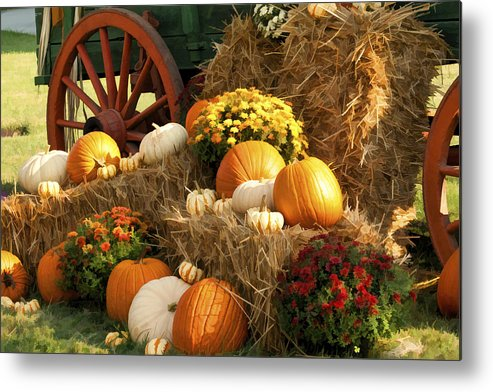 Buzz Metal Print featuring the photograph Autumn Bounty by Kathy Clark