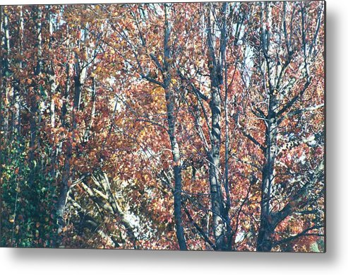 Uptown Arts Metal Print featuring the painting Autumn Foliage by Paul Louis Mosley