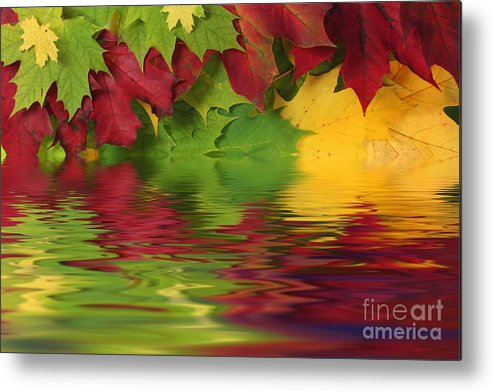 Leaves Metal Print featuring the photograph Autumn Leaves In Water With Reflection by Simon Bratt Photography LRPS