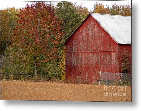 Barn Metal Print featuring the photograph Autumnal Barn by Ginger Harris