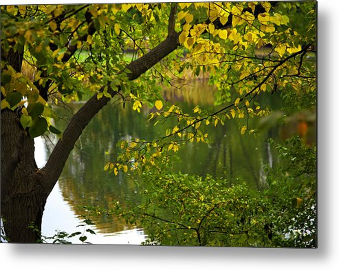 Autumn Metal Print featuring the photograph Autumn's Touch by Madeline Ellis