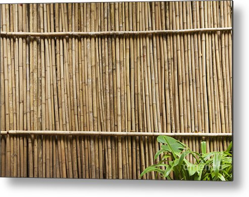 Architectural Detail Metal Print featuring the photograph Bamboo Fence by Don Mason