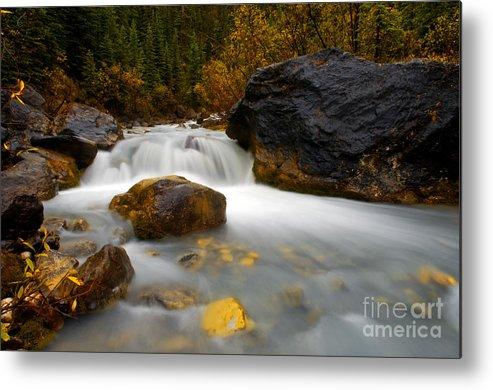 Banff National Park Metal Print featuring the photograph Banff - Autumn Creek by Terry Elniski