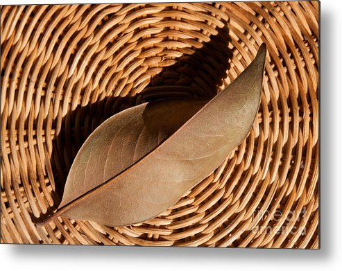 Brown Metal Print featuring the photograph Basket Of Brown by Dan Holm