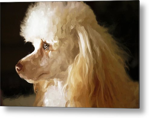 Dogs Metal Print featuring the digital art Bella by Mickey Clausen