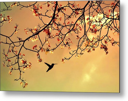 Horizontal Metal Print featuring the photograph Bird Singing In The Morning Sky by Autumnn