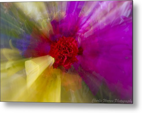 Flower Metal Print featuring the photograph Bloom Zoom2 by Charles Warren