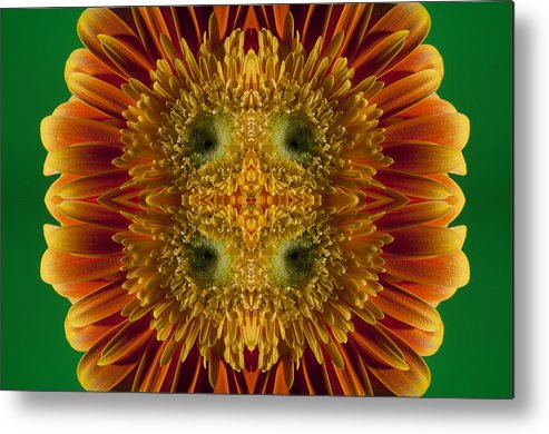 Abstract Metal Print featuring the photograph Blumen Art by Nathan Wright