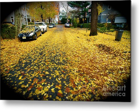 Fall Leaves Metal Print featuring the photograph Brooklyn New York by Mark Gilman