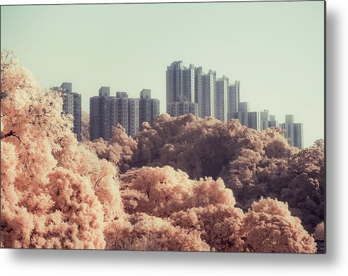 Horizontal Metal Print featuring the photograph Buildings On Hillside by Yiu Yu Hoi