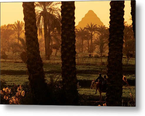 Africa Metal Print featuring the photograph Children Ride A Donkey Near The Step by Kenneth Garrett