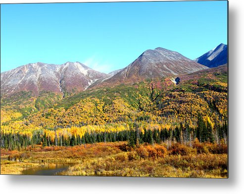 Doug Lloyd Metal Print featuring the photograph Color Palet by Doug Lloyd