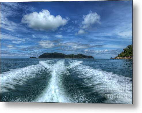 Tropical Metal Print featuring the photograph Cruising by Adrian Evans