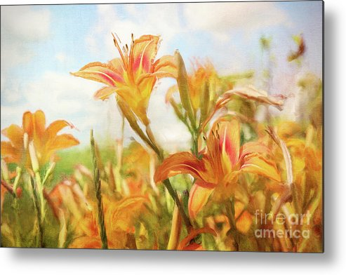 Art Metal Print featuring the photograph Digital Painting Of Orange Daylilies by Sandra Cunningham