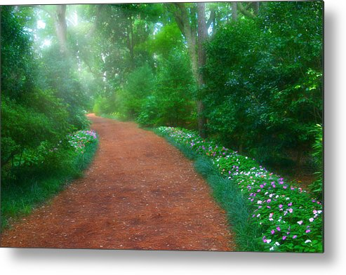 Early Metal Print featuring the photograph Early Morning Garden Walk by Cindy Haggerty