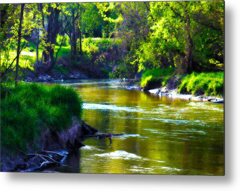 Enchanted Metal Print featuring the photograph Enchanted River by Rebecca Frank
