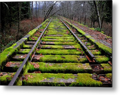Snoqualmie Metal Print featuring the photograph End Of The Line by Scott Massey