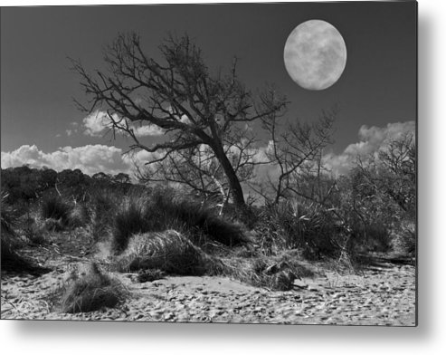 Fine Metal Print featuring the photograph Full Moon Over Jekyll by Debra and Dave Vanderlaan