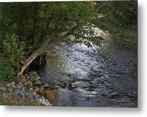 Metal Print featuring the photograph Glimmer by Alan Rutherford