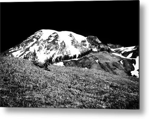 Mount Rainier Metal Print featuring the photograph Glorious Mount Rainier by David Patterson
