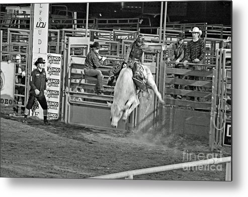 Bull Riding Metal Print featuring the photograph Going For 8 by Shawn Naranjo