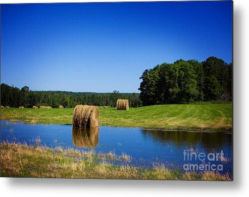 Pond Metal Print featuring the photograph High And Dry On The North Forty by The Stone Age