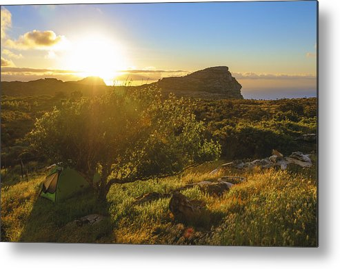 Horizontal Metal Print featuring the photograph Hiking Tent Under Apple Tree, Table Mountain National Park, Cape Town, Western Cape, South Africa by Andy Nixon