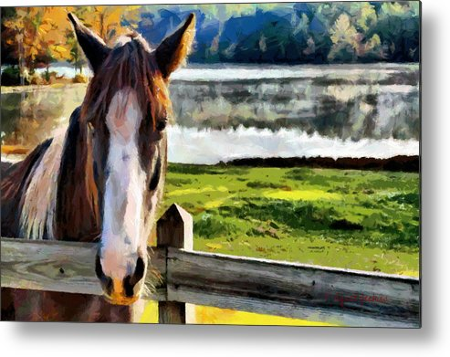 Horse Metal Print featuring the painting Horse At Lake Leroy by Lynne Jenkins