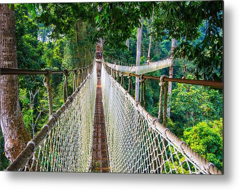Horizontal Metal Print featuring the photograph Jungle Walk From High Above by Feng Wei Photography