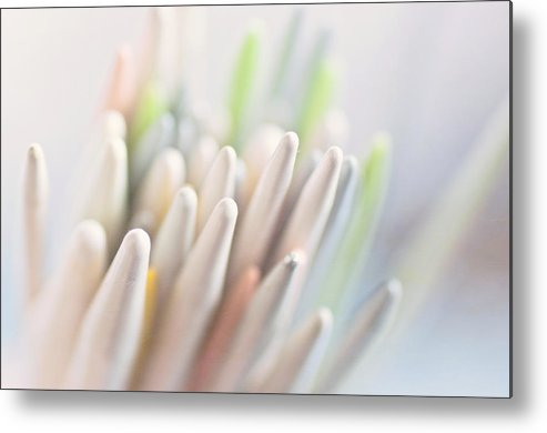 Horizontal Metal Print featuring the photograph Knitting Needles by Jill Ferry