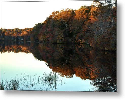 Lake Metal Print featuring the photograph Lakeside South County by Barry Doherty