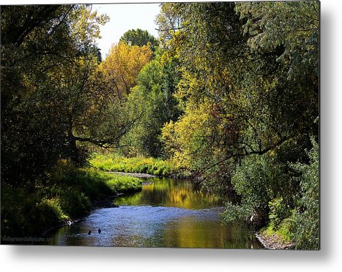 Autumn Metal Print featuring the photograph Lazy Autumn River by KatagramStudios Photography
